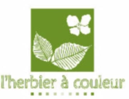 herbier_bontoux