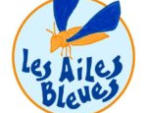 ailes_bleues